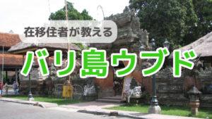 【バリ島ウブド】場所、行き方、歴史、魅力を在住者が徹底解説!