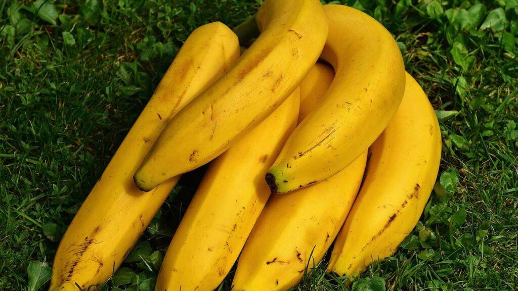 蒸しバナナ(ピサンルブス)